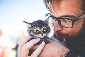 עושים שינוי -איך להקים עמותה למען בעלי חיים בישראל